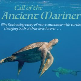 Call of the Ancient Mariner – Tee Shirt & DVD Bundle