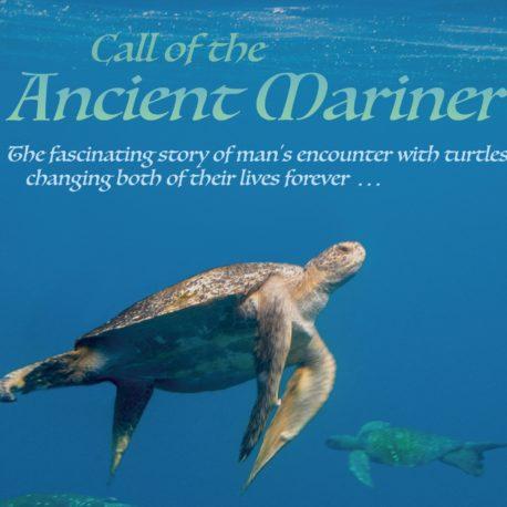 marinerr-poster-web-version